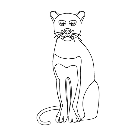 Panther, predatory animal. Pantera, wild cat single icon in outline style vector symbol stock illustration web.