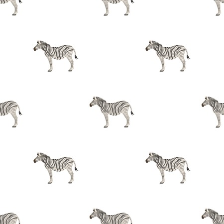 African, desert zebra. Wild cloven-hoofed animal, zebra single icon in cartoon style vector symbol stock illustration web.
