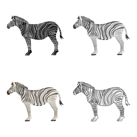 African, desert zebra. Wild cloven-hoofed animal, zebra single icon in cartoon style vector symbol stock illustration .