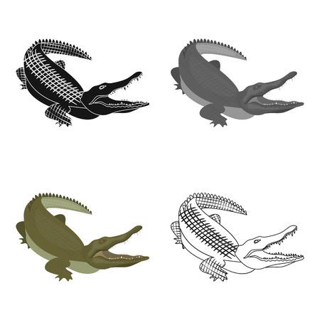 Reptile, Nile crocodile single icon in cartoon style vector symbol stock illustration web.