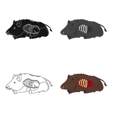 Boar single icon in cartoon style. Boar, vector symbol stock illustration web.