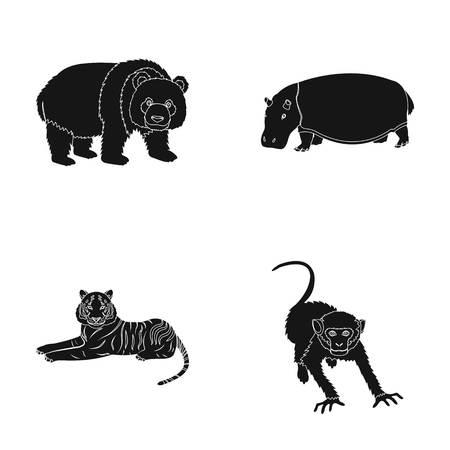 Bamboo bear, hippopotamus, wild animal tiger, monkey . Wild animal set collection icons in black style vector symbol stock illustration web.