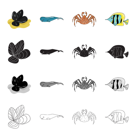 clown fish: Mussels, sea whale, crab, fish clown.Sea animal set collection icons in cartoon black monochrome outline style vector symbol stock illustration web.