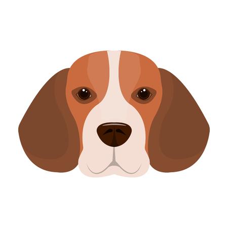 Breed dog beagle..Muzzle beagle single icon in cartoon style vector symbol stock illustration web.
