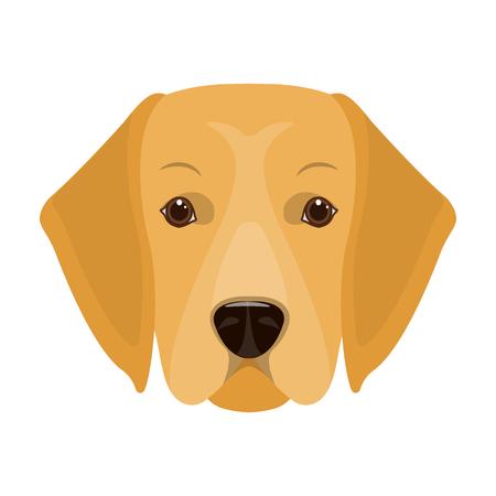 A dog breed, a golden retriever.Muzzle of the Golden Retriever single icon in cartoon style vector symbol stock illustration web.