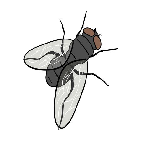Dipterous insect fly.Dipterous insect fly single icon in cartoon style vector symbol stock isometric illustration web. Reklamní fotografie - 87011464