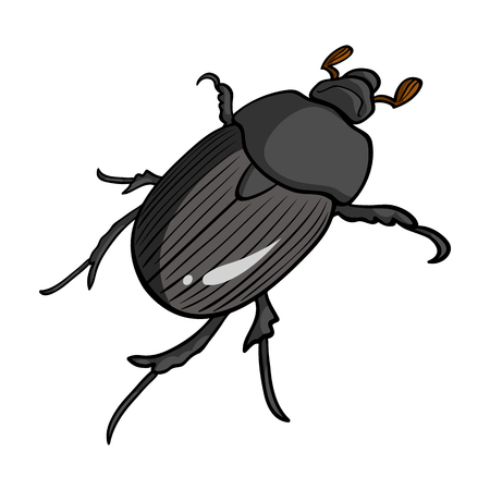 coleoptera: Beetle is a coleopterous insect.Arthropods insect, beetle single icon in cartoon style vector symbol stock isometric illustration web.