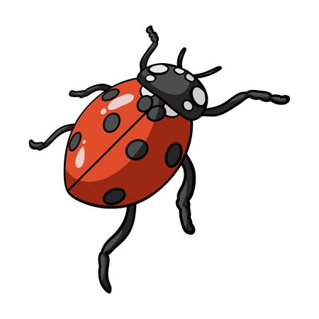 ladybug: Ladybug is an arthropod.The insect beetle,ladybug single icon in cartoon style vector symbol stock isometric illustration web.