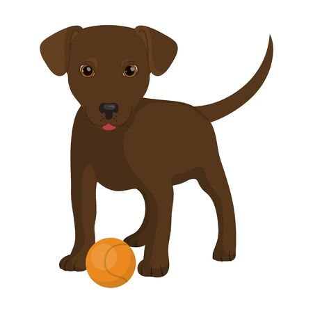 Pet, puppy dog with a ball. Pet,dog care single icon in cartoon style vector symbol stock illustration web. Ilustrace