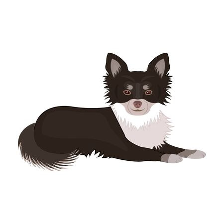 A pet, a lying dog. Pet ,dog care single icon in cartoon style vector symbol stock illustration web.