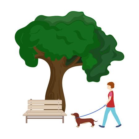 트리 및 벤치, 여자 공원에서 애완 동물 산책. 애완 동물, 개 케어 만화 스타일에서 단일 아이콘 벡터 기호 재고 일러스트 웹. 일러스트