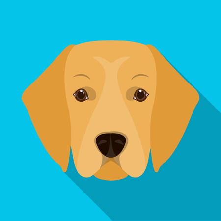 A dog breed, a golden retriever.Muzzle of the Golden Retriever single icon in flat style vector symbol stock illustration web. Illustration