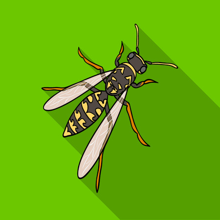 Wasp, hymenopteran insect.Wasp, stinging insect single icon in flat style vector symbol stock isometric illustration web. Çizim