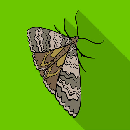 Moth, night butterfly. Insect pest moth single icon in flat style vector symbol stock isometric illustration web.