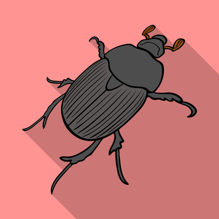 a coleopterous insect.Arthropods insect, single icon in flat style vector symbol stock isometric illustration web.