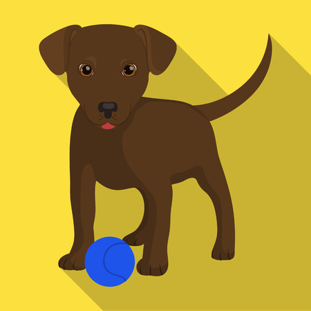 Pet, puppy dog with a ball. Pet,dog care single icon in flat style vector symbol stock illustration web.