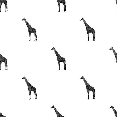 Giraffe is the highest land animal. A wild animal, a giraffe single icon in black style vector symbol stock illustration web. Illustration