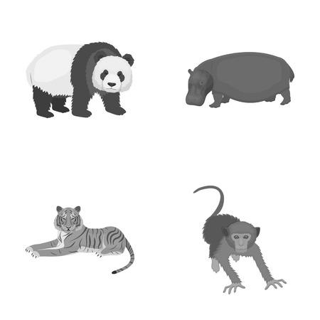 Bamboo bear, hippopotamus, wild animal tiger, monkey . Wild animal set collection icons in monochrome style vector symbol stock illustration web.