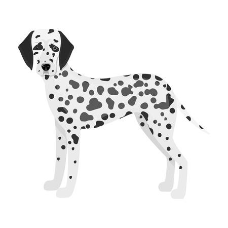 dalmatian: Dalmatian, single icon in monochrome style.Dalmatian vector symbol stock illustration web.