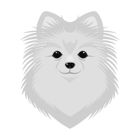 Breed of a dog, spitz.Muzzle Spitz single icon in monochrome style vector symbol stock illustration web. Illustration