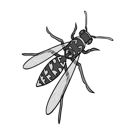 Wasp, hymenopteran insect.Wasp, stinging insect single icon in monochrome style vector symbol stock isometric illustration web.