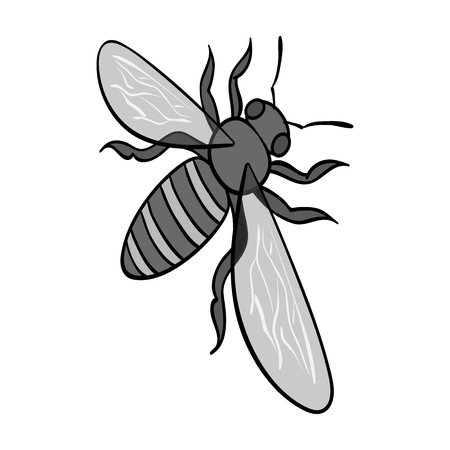 A bee, a hymenopteran insect. Stinging insect bee single icon in monochrome style vector symbol stock isometric illustration web. Illustration