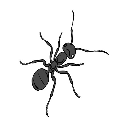 The hymenopteran insect is an ant.Arthropod animal ant single icon in monochrome style vector symbol stock isometric illustration web.