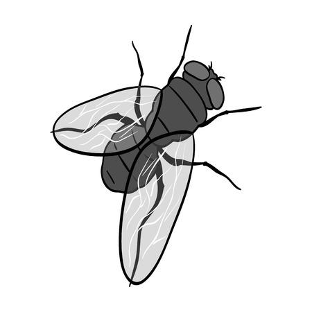 Dipterous insect fly.Dipterous insect fly single icon in monochrome style vector symbol stock isometric illustration web. Çizim