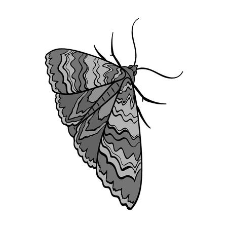 Moth, night butterfly. Insect pest moth single icon in monochrome style vector symbol stock isometric illustration web. Illusztráció