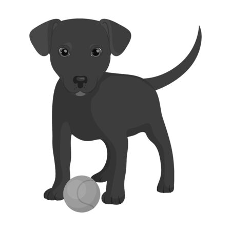 Pet, puppy dog with a ball. Pet,dog care single icon in monochromt style vector symbol stock illustration web.