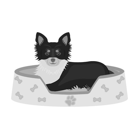 Lounger for a pet, a sleeping place. Dog,care of a pet single icon in monochromt style vector symbol stock illustration web.