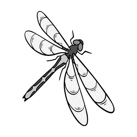 A dragonfly, a predatory insect.Dragonfly flying invertebrate insect single icon in monochrome style vector symbol stock isometric illustration web.