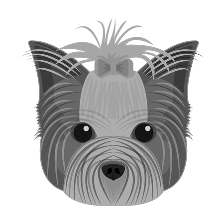 Muzzle of a pet, a hairdress dog with a bow. Pet ,dog care single icon in monochromt style vector symbol stock illustration web.