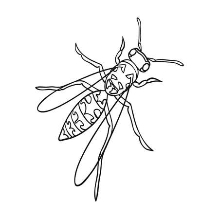 Wasp, hymenopteran insect.Wasp, stinging insect single icon in outline style vector symbol stock isometric illustration web.