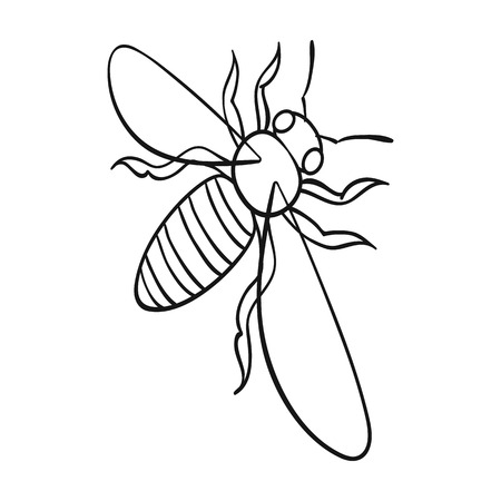 A bee, a hymenopteran insect. Stinging insect bee single icon in outline style vector symbol stock isometric illustration web. Çizim