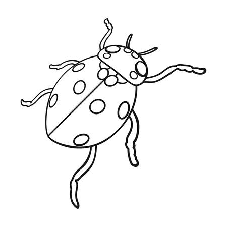 Ladybug is an arthropod.The insect beetle,ladybug single icon in outline style vector symbol stock isometric illustration web.