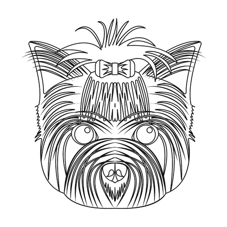 Muzzle of a pet, a hairdress dog with a bow. Pet,dog care single icon in outline style vector symbol stock illustration . 向量圖像