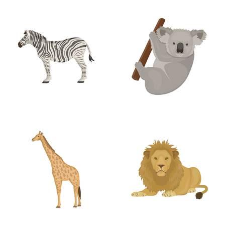 African zebra,animal koala, giraffe, wild predator, lion. Wild animals set collection icons in cartoon style vector symbol stock illustration .