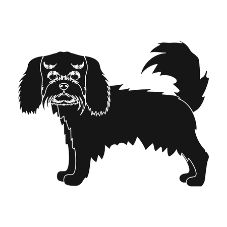 hounds: Spaniel, single icon in black style.Spaniel vector symbol stock illustration .
