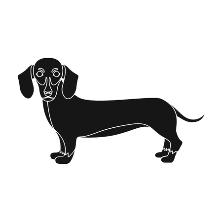 hounds: Dachshund, single icon in black style.Dachshund, vector symbol stock illustration .