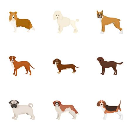 Dachshund, laika, poodle and other  icon in cartoon style.Boxer, rottweiler, bulldog, icons in set collection Illustration