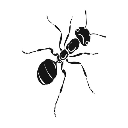 The hymenopteran insect is an ant.Arthropod animal ant single icon in black style vector symbol stock isometric illustration .
