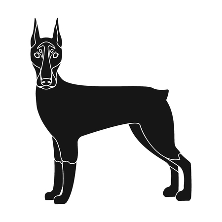 hounds: Doberman, single icon in black style.Doberman, vector symbol stock illustration . Illustration