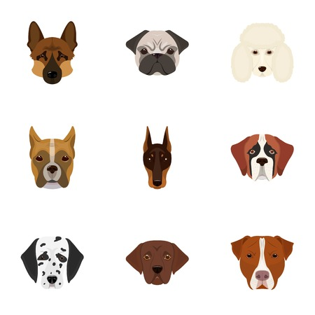 Doberman, Dalmatian, Dachshund, Spitz, Stafford and other breeds of dogs.Muzzle of the breed of dogs set collection icons in cartoon style vector symbol stock illustration . Illustration