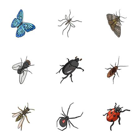 wasp, bee, ant, fly, spider, mosquito and other insect species. Various insects set collection icons in cartoon style vector symbol stock isometric illustration . Ilustração