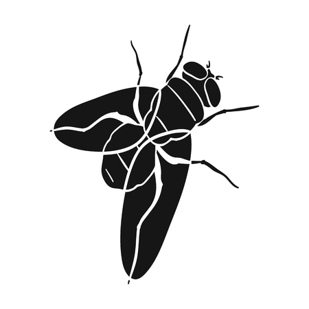 The fly is ordinary.Dipterous insect fly single icon in black style vector symbol stock isometric illustration . Reklamní fotografie - 87225953