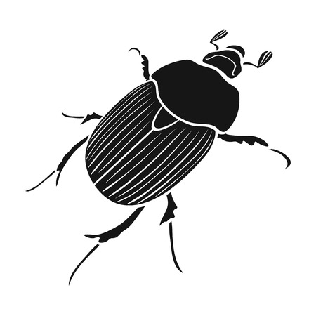 coleoptera: Beetle is a coleopterous insect.Arthropods insect, beetle single icon in black style vector symbol stock isometric illustration .
