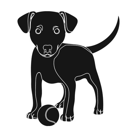 Pet, puppy dog with a ball. Pet,dog care single icon in black style vector symbol stock illustration .