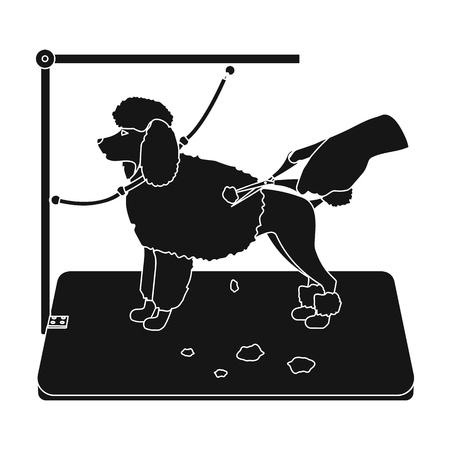 Haircut pet in a stylish salon. Pet,dog care single icon in black style vector symbol stock illustration . Illustration