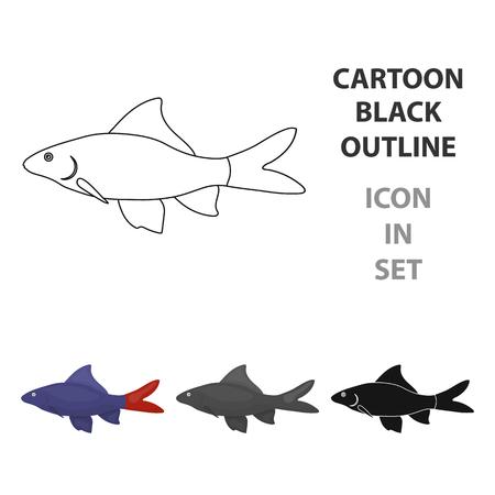 Red Tail Shark fish icon cartoon. Singe aquarium fish icon from the sea,ocean  cartoon.